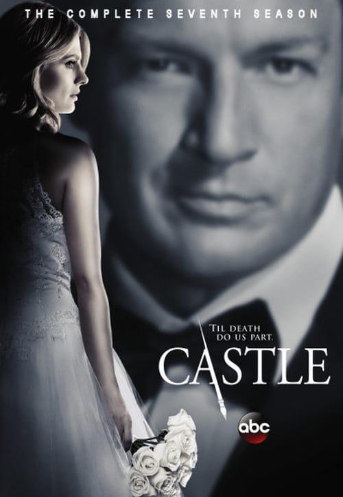 Watch Castle: Season 7   Online
